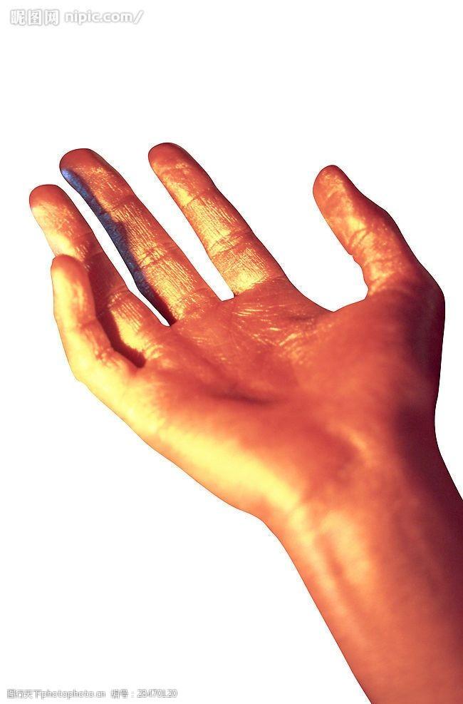 手造型金色手的造型